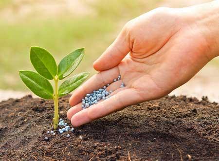 Как не допустить почвоутомления